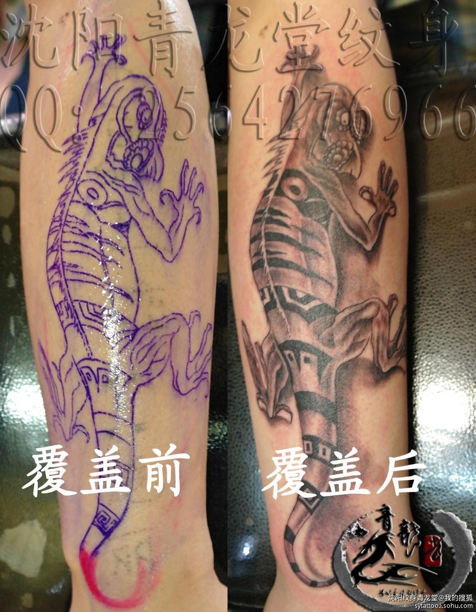 求一本小说:主角是以青龙为腿,朱雀为趐,白虎为手,玄武为身的修炼小说,身居阴阳灵体。(图2)  求一本小说:主角是以青龙为腿,朱雀为趐,白虎为手,玄武为身的修炼小说,身居阴阳灵体。(图4)  求一本小说:主角是以青龙为腿,朱雀为趐,白虎为手,玄武为身的修炼小说,身居阴阳灵体。(图7)  求一本小说:主角是以青龙为腿,朱雀为趐,白虎为手,玄武为身的修炼小说,身居阴阳灵体。(图9)  求一本小说:主角是以青龙为腿,朱雀为趐,白虎为手,玄武为身的修炼小说,身居阴阳灵体。(图12)  求一本小说:主角是以青龙为