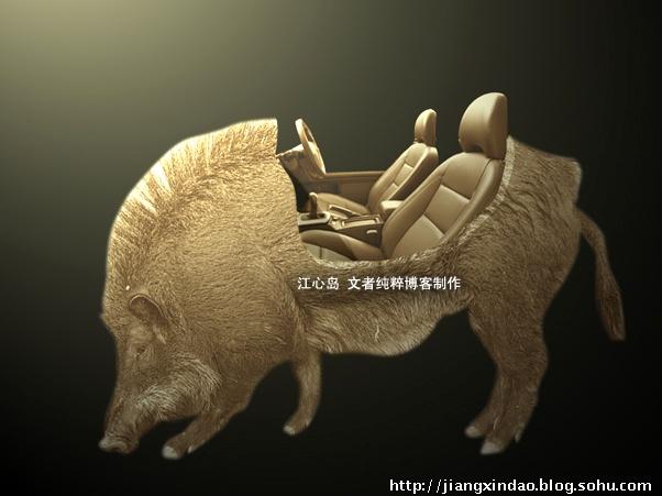 野猪内脏结构图