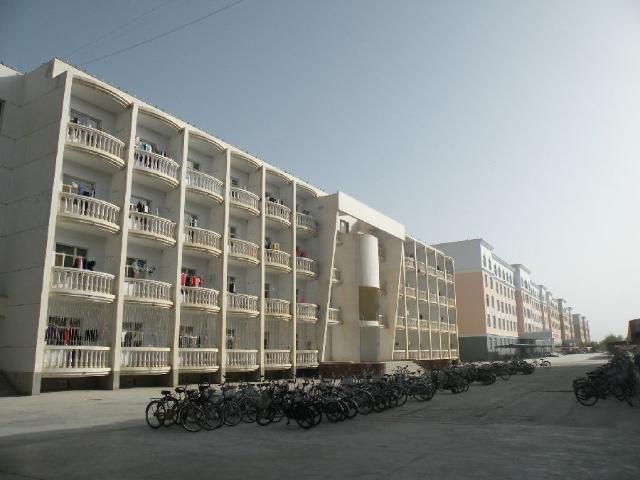 漠学府——塔里木大学