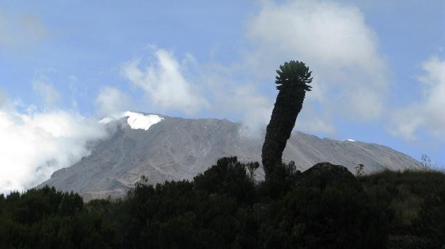 攀登非洲最高峰-乞力马扎罗-最后的冲刺(第四,五,六天