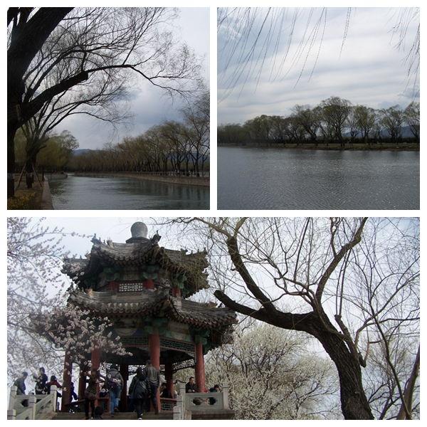 4月5日 颐和园:西堤花开-阳光伴我成长-搜狐博客